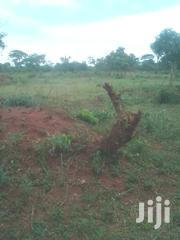 2 Square Miles of Agricultural Land on Sale at Kayina Luweero District | Land & Plots For Sale for sale in Central Region, Luweero