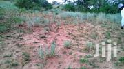 13 Acres Of Title Land For Sale In Kihura, Kyenjojo District, Uganda | Land & Plots For Sale for sale in Western Region, Kyenjojo