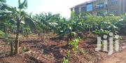 100*100 Plot For Sale In Kireka Ajjenda Namugongo Road (25decimals) | Land & Plots For Sale for sale in Central Region, Wakiso