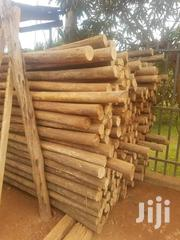 Sales Representative Of Fresh & Treated Eucalyptus Poles | Sales & Telemarketing Jobs for sale in Central Region, Kampala