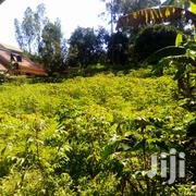 They Are 27 Decimals for Sale in Kyanja Komamboga at 110M Ugx | Land & Plots For Sale for sale in Central Region, Kampala