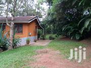 4 Acres on Sale 4m Each  Located at Luweero Kakiinzi Land Its Fertih | Land & Plots For Sale for sale in Central Region, Kampala