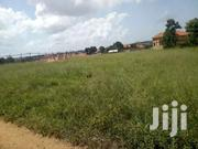 Very Gd Plot On Forced Sale In Maya London College Near Main Title | Land & Plots For Sale for sale in Central Region, Kampala