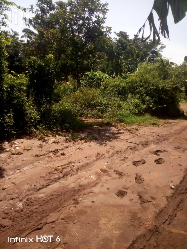 Archive: Land At Kitala Entebbe For Sale