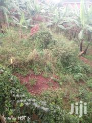 Kisubi- Ziru on Entebbe Road | Land & Plots For Sale for sale in Central Region, Kampala