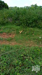 17 Decimals Up For Sale In Joggo Neighbouring Sonde & Seeta | Land & Plots For Sale for sale in Central Region, Mukono