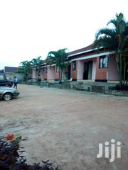 Numugongo Modern Double Room Avairable for Rent | Houses & Apartments For Rent for sale in Central Region, Kampala