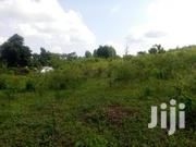 Very Fertile 85 Acres on Quick Sale Kasiiso Kasana at 3 M Shs Per Acre | Land & Plots For Sale for sale in Central Region, Kampala